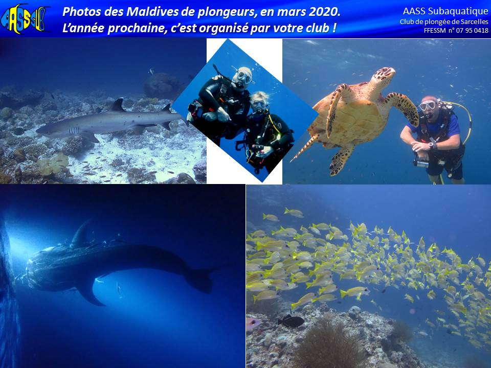 http://www.aass-sub.fr/images/Alex%202019%202020/2020%2004%20-%20Maldives%202.jpg