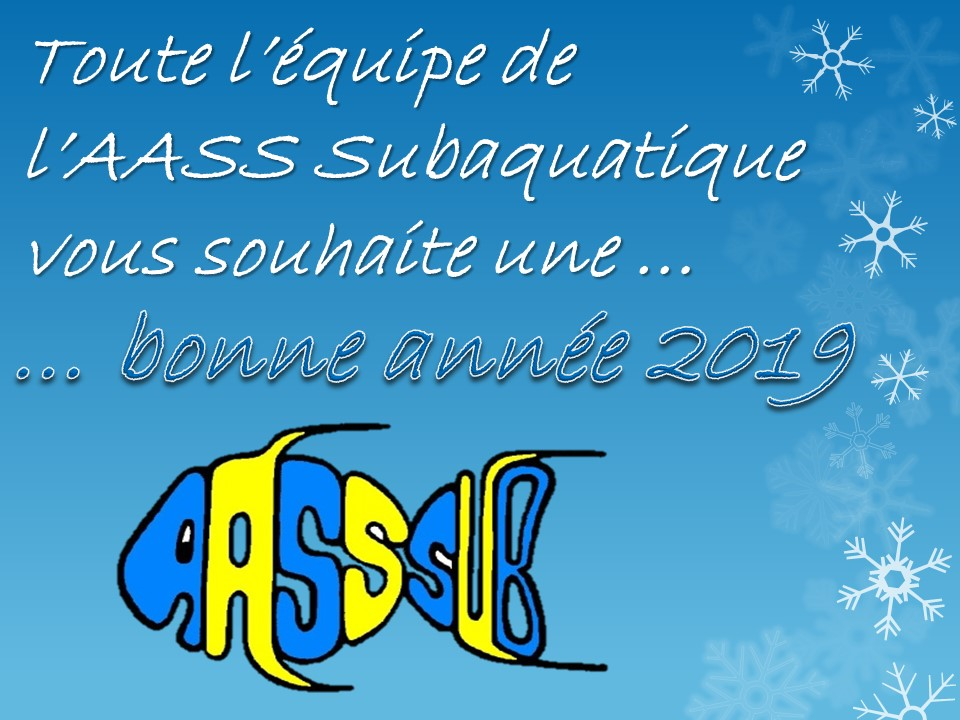 http://www.aass-sub.fr/images/Alex/Voeux%202019.JPG